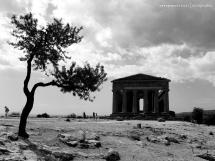 Templo da Concórdia